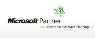 Microsoft Partner - Gold Enterprise Resource Planning